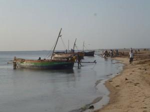Les pêcheurs au petit matin